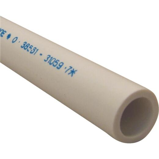 Charlotte Pipe 1/2 In. X 5 Ft. PVC Schedule 40 Cold Water Pressure Pipe